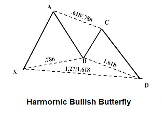 Harmonic-Butterfly-1
