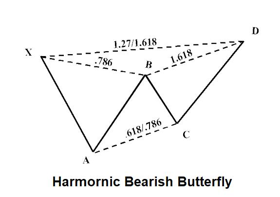 Harmonic-Butterfly-2